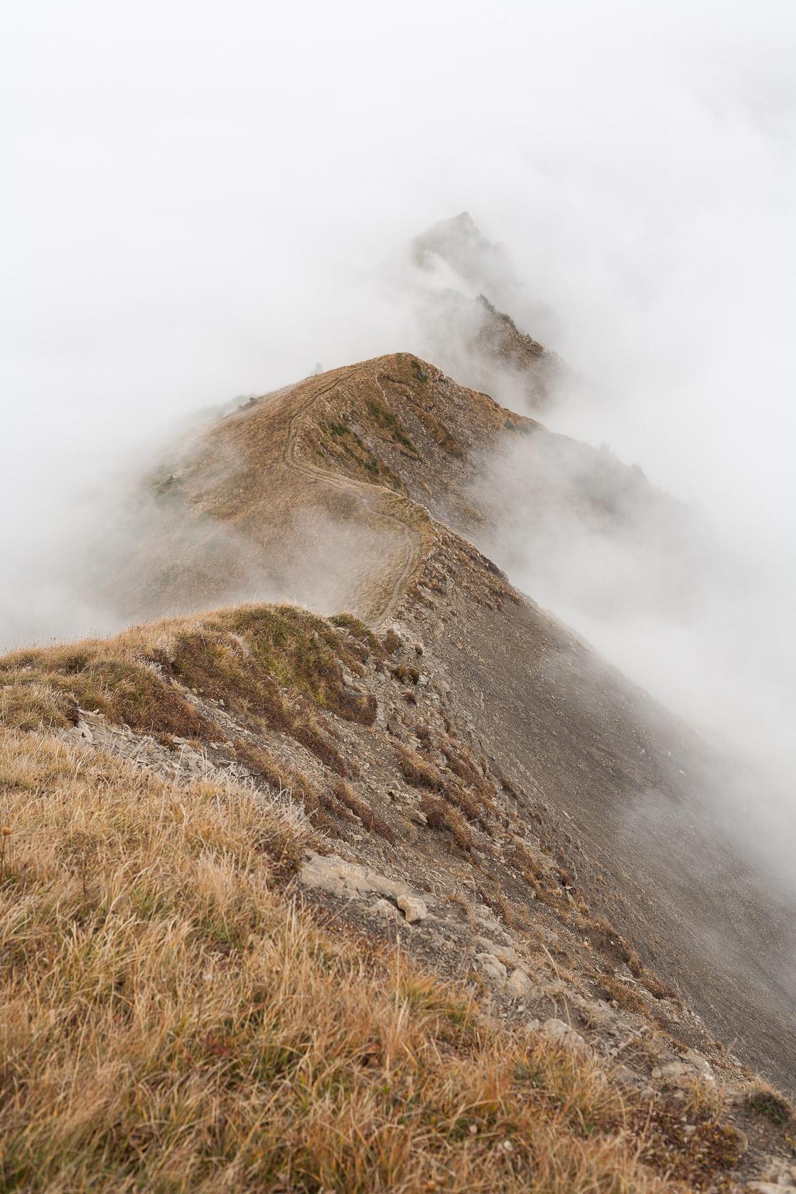 Crête sommitale entre la Pointe de Chaurionde et la Sambuy, dans le massif des Bauges