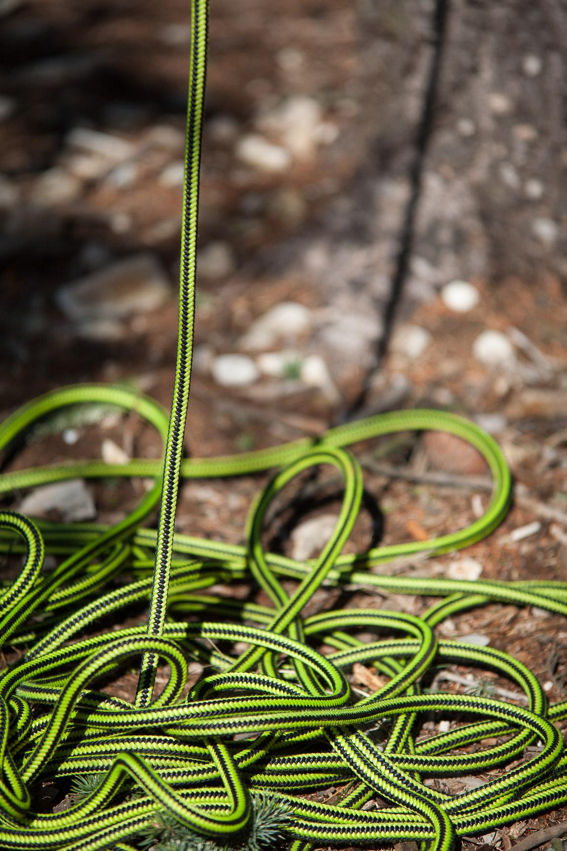 corde pour grimper dans les arbres