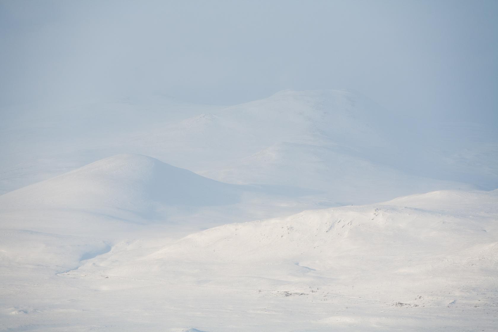 Parc national de Dovrefjell, en Norvège