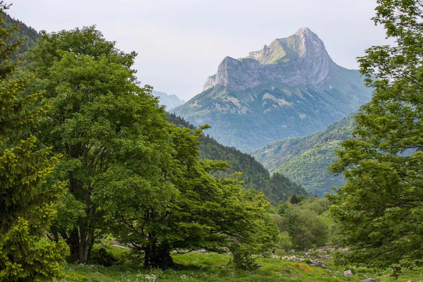 Synclinal perché du Trélod et de la Dent de Pleuven, Géoparc du massif des bauges