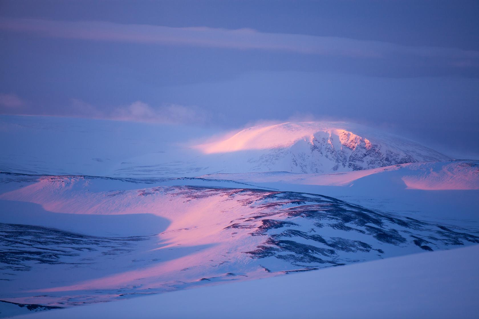hiver dans le Dovrefjell, en norvège