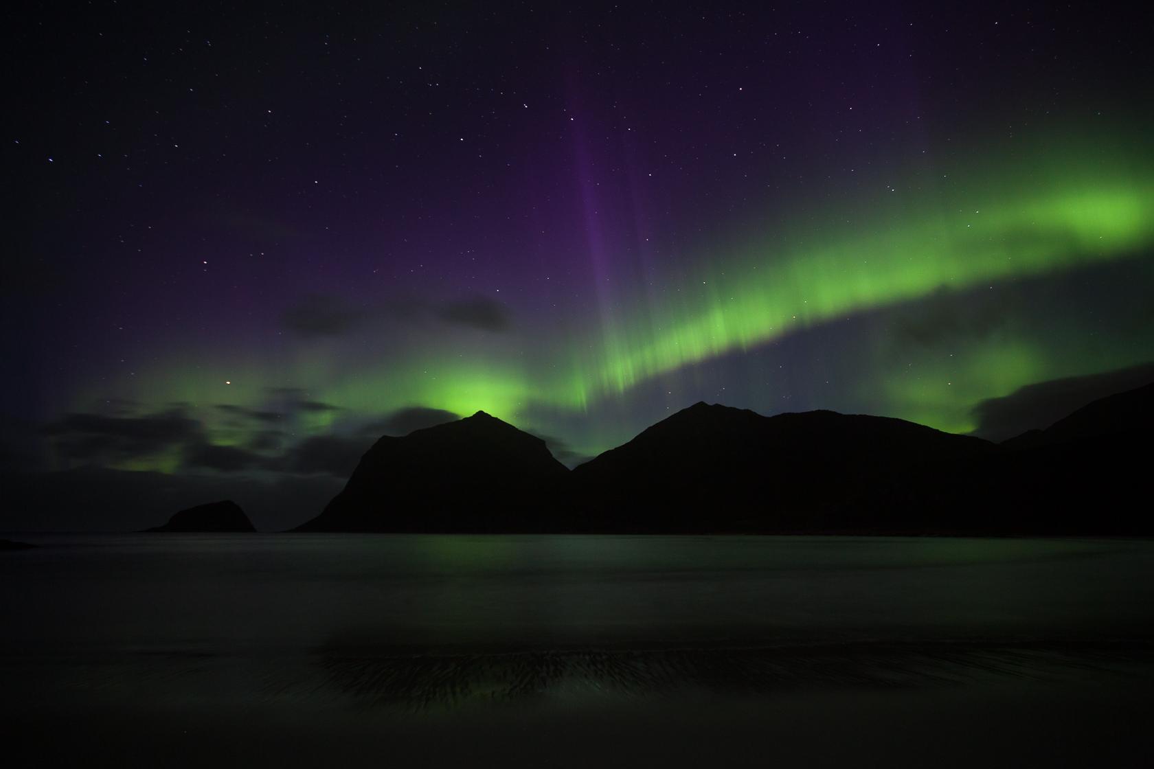 aurore boréale à la plage d'Haukland pendant un voyage photo dans les îles Lofoten, en norvège