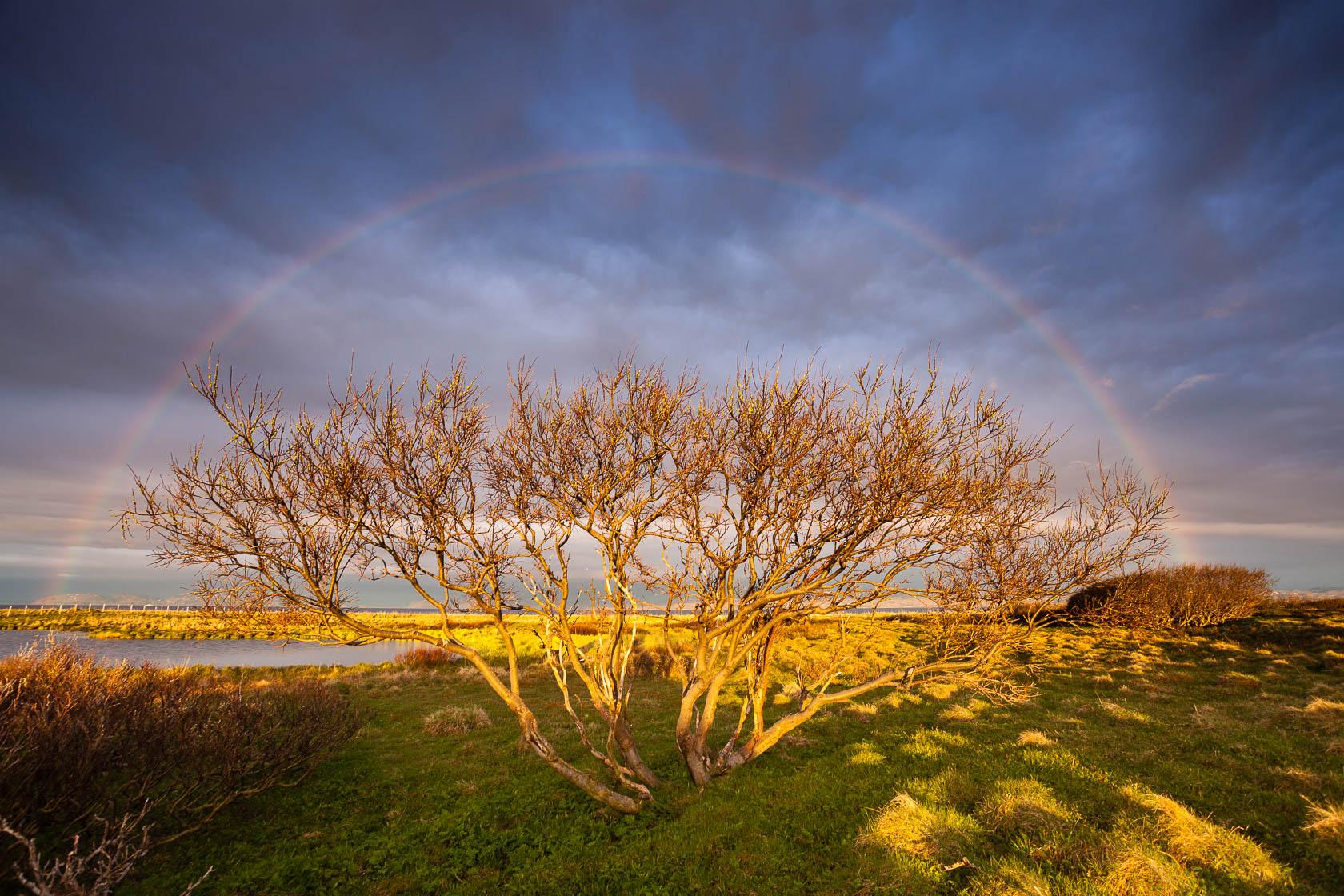 arc en ciel sur la presqu'île de vadso en Norvège