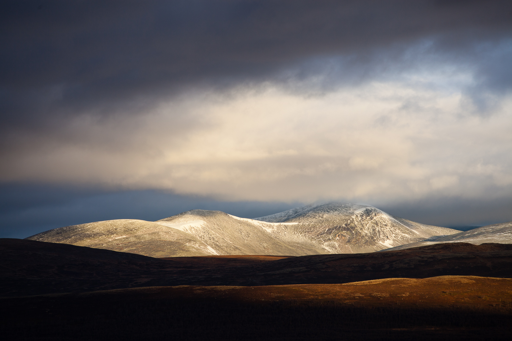 Dovrefjell national park in Norway