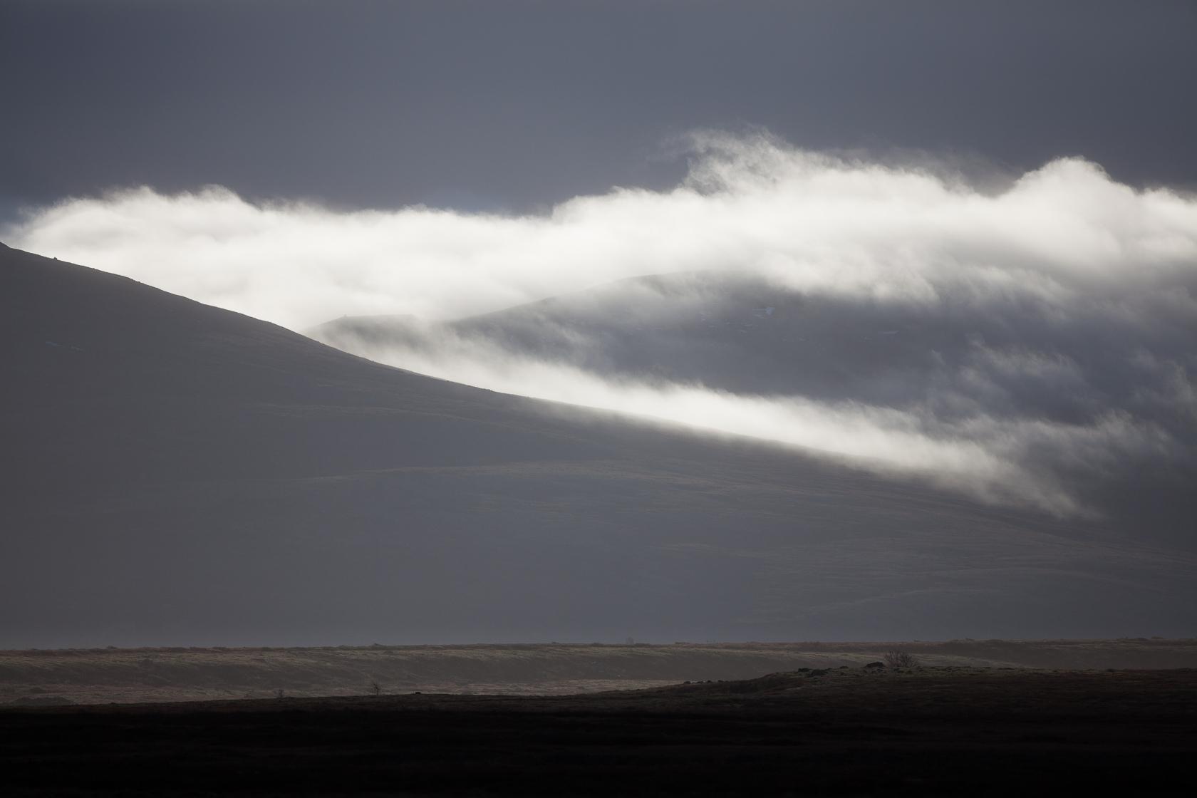 parc national de Dovrefjell