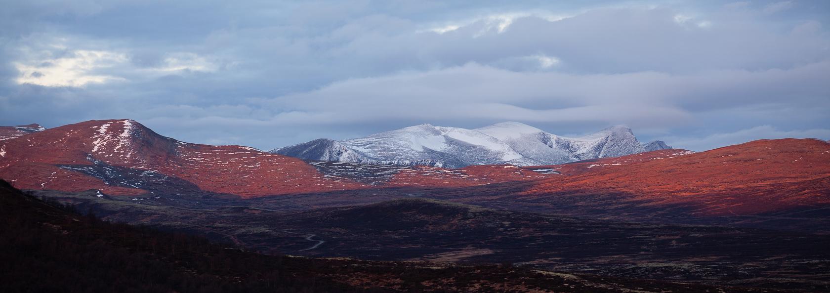 Montagnes de Dovrefjell en Norvège