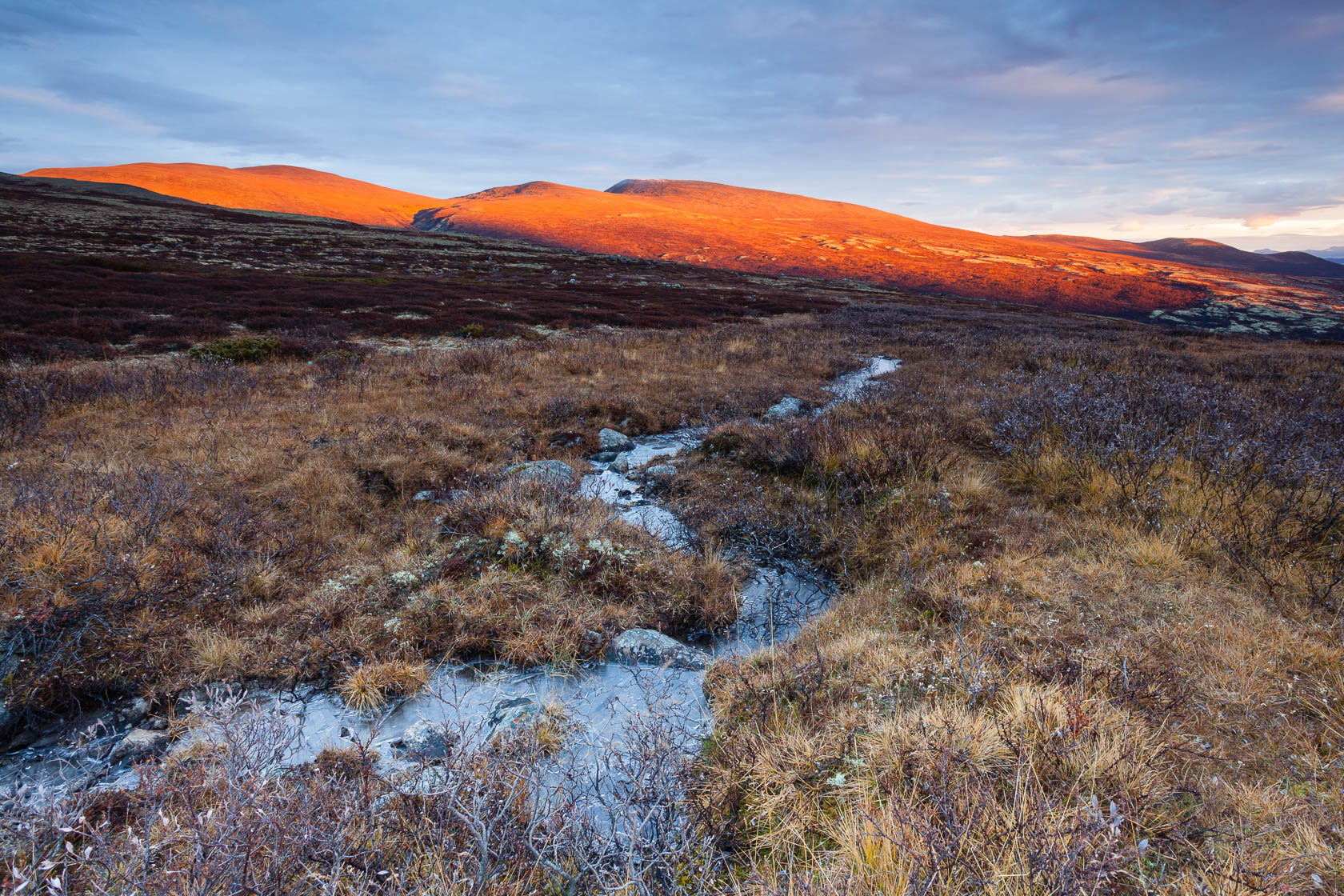 Montagnes du parc du Dovrefjell en Norvège