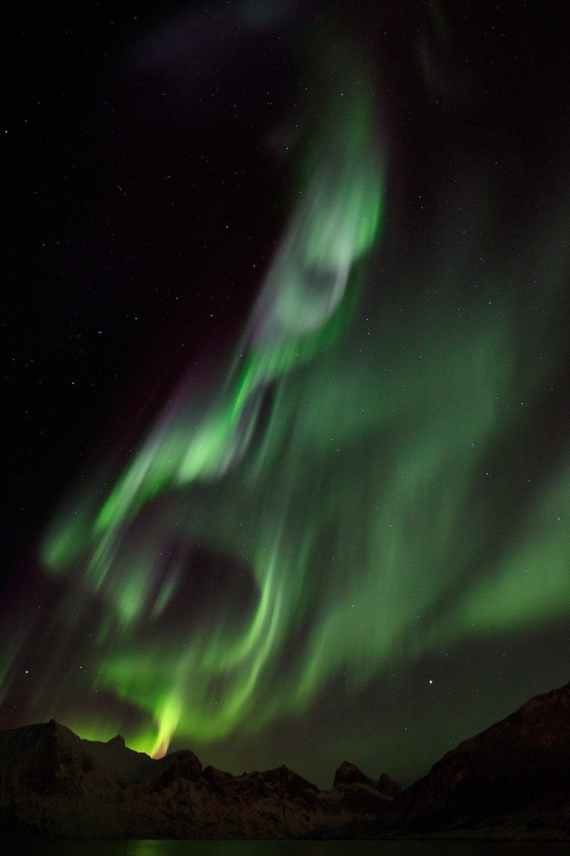 aurores boréales pendant un voyage photo à Senja, dans la région de Tromsø, en Norvège