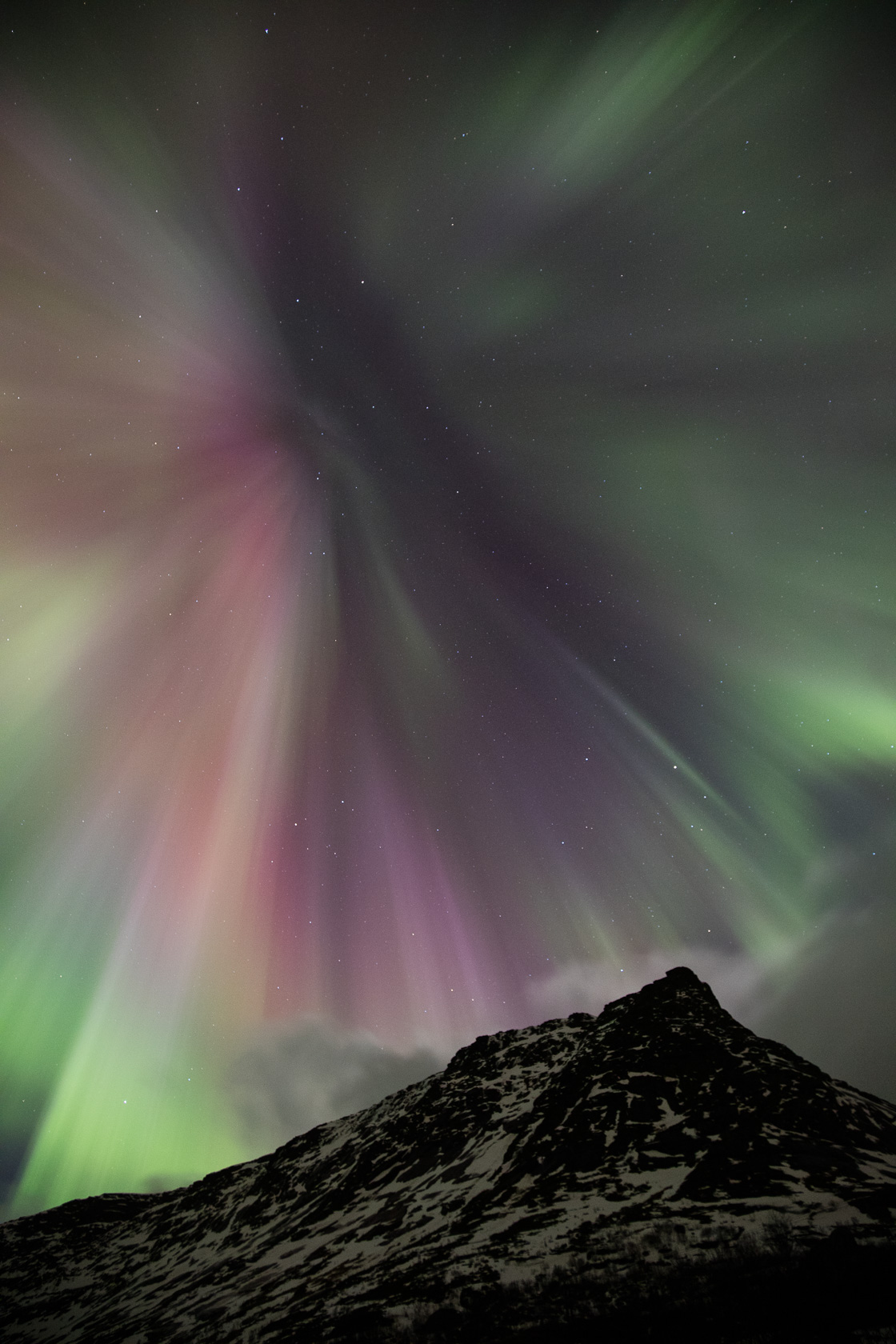 aurore boréale en corona lors d'un voyage photo dans les îles Lofoten, en Norvège