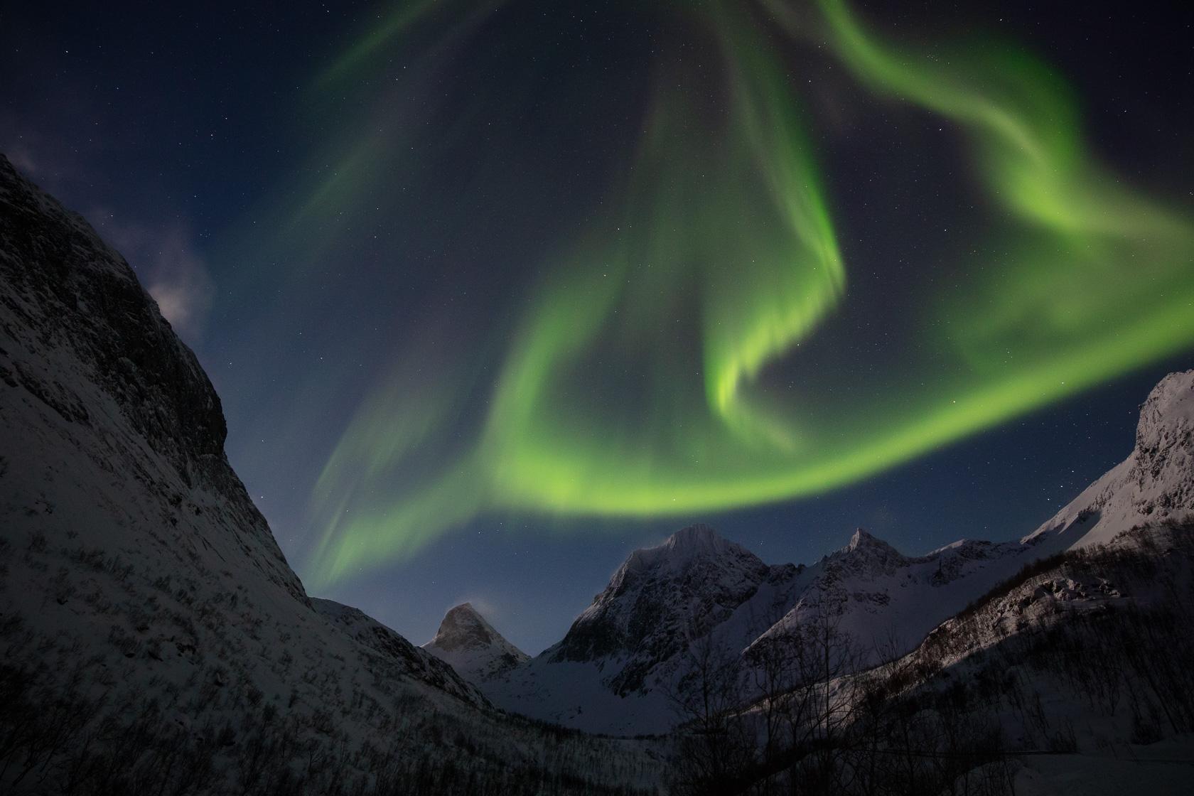 aurores boréales dans l'île de Senja en Norvège, lors d'un voyage photo