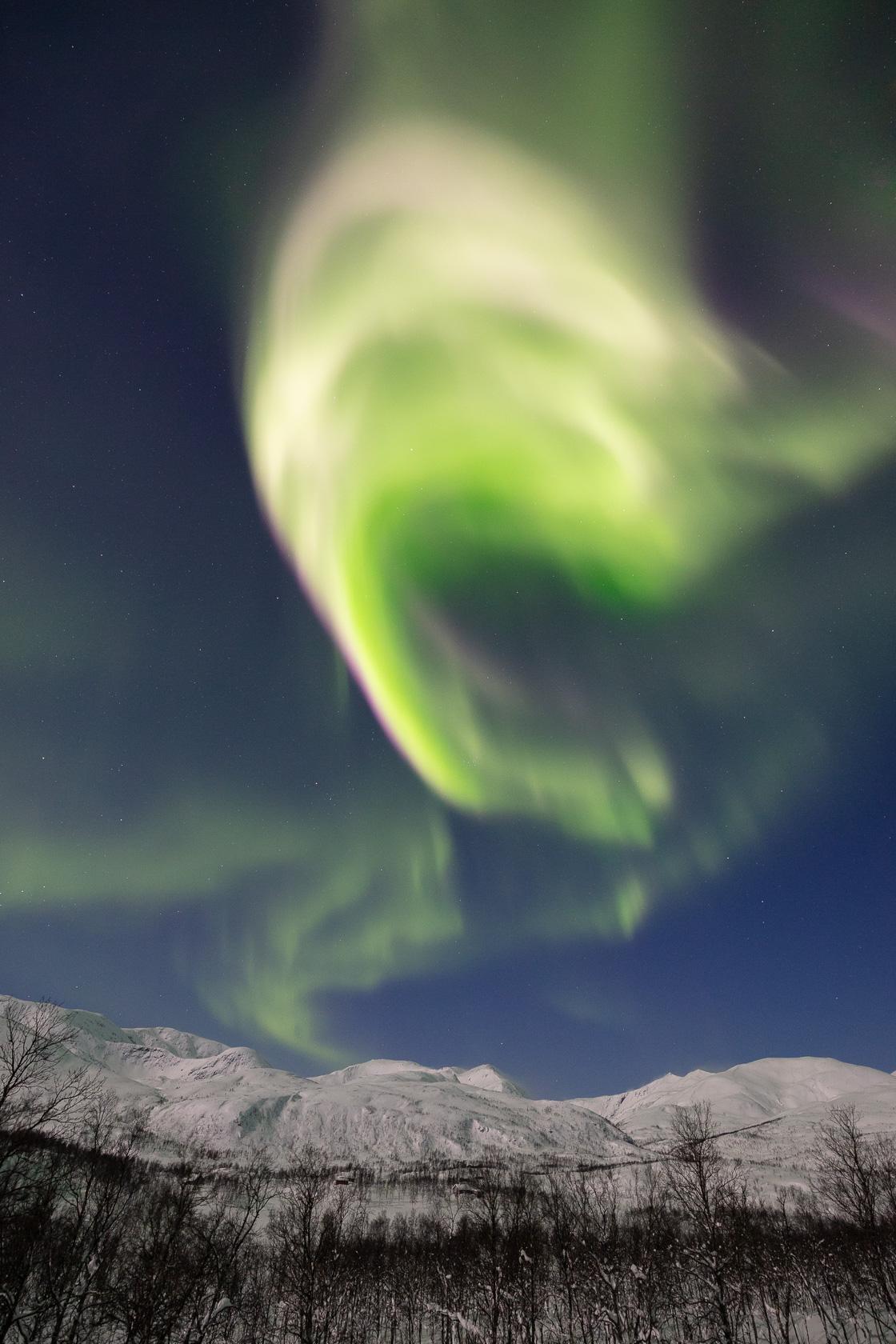 grosse aurore boréale sur l'île de Senja, pendant un voyage photo en Norvège