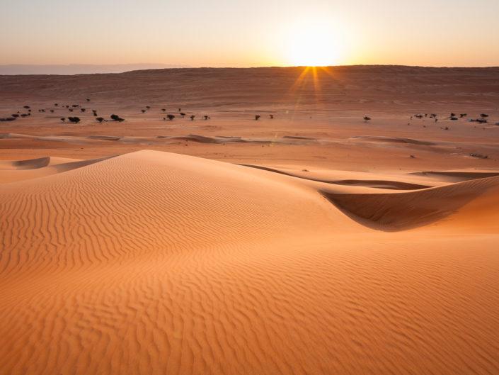 Nature & déserts de l'Arabie heureuse