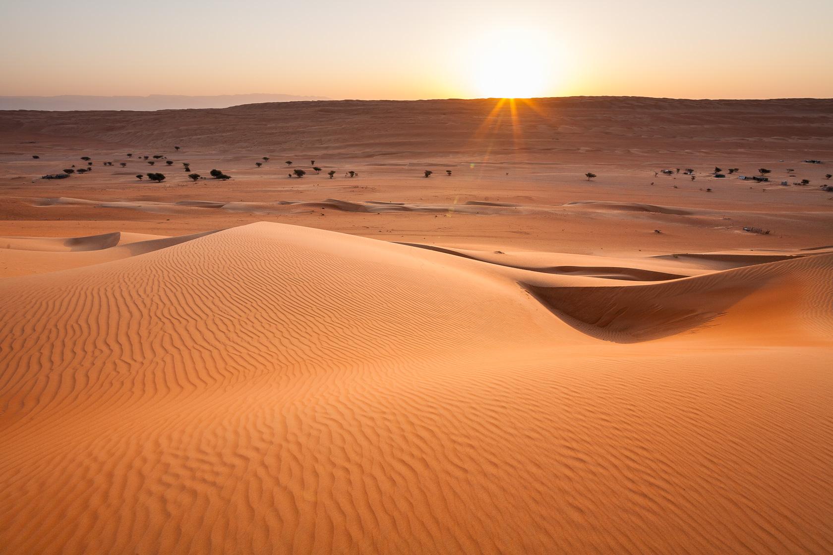 dunes du Ramlat al Wahiba, à Oman
