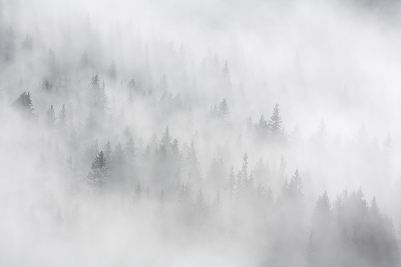brumes hivernales en stage photo dans les Bauges en hiver